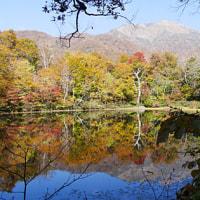 絶景紅葉の「刈込池」へ行ってきました