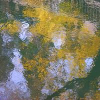水面の彩り