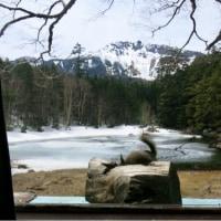 2017.5 北八ヶ岳で山籠り