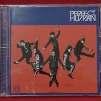 CDを予約して買うのって・・・ ~ RADIO FISH  『PERFECT HUMAN』 ~