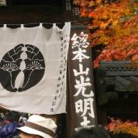 京都・紅葉狩り