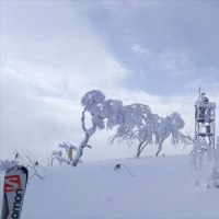 恒例のスキーツアー 6