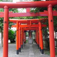 伏見の稲荷山は古代の祭祀場・・日本人は、なぜ狐を信仰するのか?村松潔氏(2)