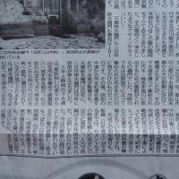 天瀬排水樋門・光合成・自殺率 20017.05.19 「302」