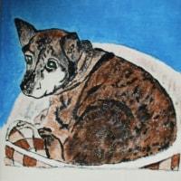 亡き愛犬の絵が完成した!:
