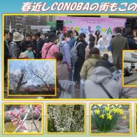 春待ちかねて「春近しCONOBAの街もこの人出」