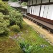 【2017_05】随心院、と勧修寺(京都 山科ぶらぶら)