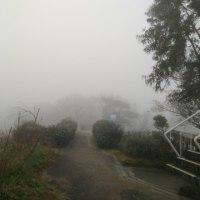 霧の王子が岳朝練