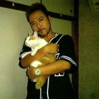 愛猫が旅立ちましたつД`)・゜・。・゜゜・*:.。..。.:*・゜