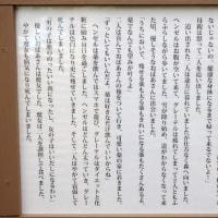 ■帯広コンテンポラリーアート2016 ヒト科ヒト属ヒト(4)