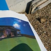住まいの新築工事・・・現場での準備の予定も先行して進めているところ(仮称)おおらかに暮らしを包み込む数寄屋の家新築計画での地盤調査「土地の軟硬・安全性・補強の計画」。