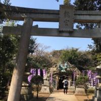 江ノ島、鎌倉、カフェ、ジェラート