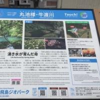 桜ロードから、パワースポットへ~☆