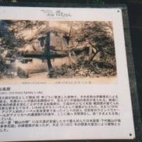 「迷い鳥たち」と松風閣(三渓園)