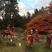 行ってきました!弘前城 菊と紅葉まつり!