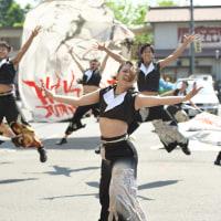 襲雷舞踊団 …第14回常陸国YOSAKOI祭り  - 5