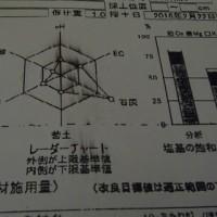 土壌分析の家庭菜園活用法(土の化学性と土壌改良の基本)