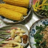 産直市場で仕入れた野菜たち