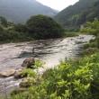 今日の勝浦川・・水量は・・・