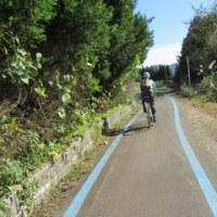蒜山高原でロードサイクル満喫