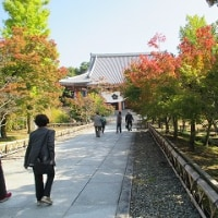 なのにあなたは京都へゆくの -そのⅠ