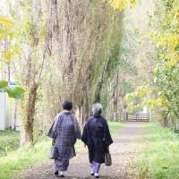 kimono  in  北大