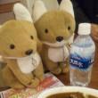 美魔女 に行ってきたゾ! 五郎の地鶏美味しい。。。