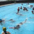 水泳学習公開