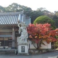 ●田川晩秋そして初冬の風景(2)成道寺公園から