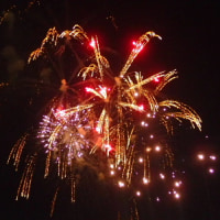 夜空に華麗!長島温泉の花火大饗宴。迫力満点できれいでした。