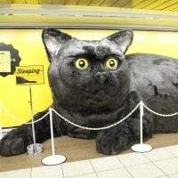 東京メトロ丸ノ内線新宿駅地下通路に巨大生物が