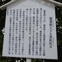 神社東0093 新熊野神社  6