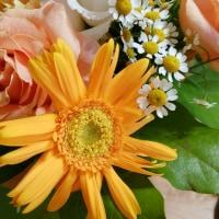 お花を頂きありがとうございます。
