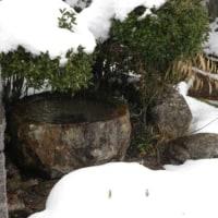 今日も家の周りは・・・・・雪景色!