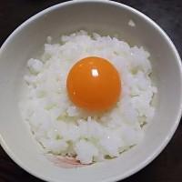 究極の卵かけごはん