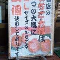 一期 いちご巡り 知多半島 No.82