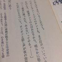 田部井さんさようなら bicoちゃんこんにちは