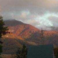今朝の紅葉、、