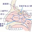 嗅覚障害の針灸治療