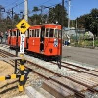 桜谷軽便鉄道の電車を運転してきた。