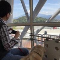 Fuji Sky View
