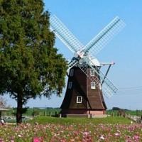秋に風車がある風景