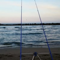 砂場の釣り