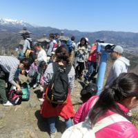 戸神山 4月23日