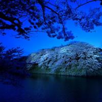 彦根城外堀ーライトアップ
