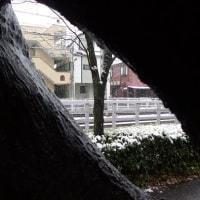 木の窓から見る雪景色