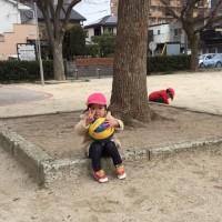 避難訓練と公園の桜と