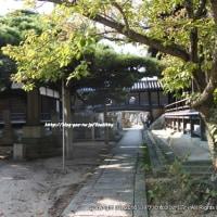 縁結び、特に「復縁」に効果的?謡曲「高砂」の高砂神社と高砂レトロな街散策。