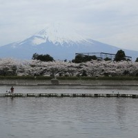 東山湖フィッシングエリアと平和公園