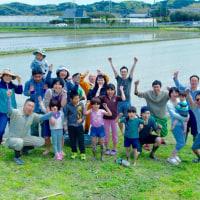 田植え体験2017